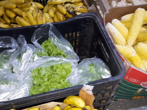 Famílias de baixa renda de Novo Horizonte do Norte são beneficiadas com alimentos da Conab