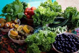 Ministério da Agricultura e FNDE querem ampliar a presença de produtos orgânicos na alimentação esco