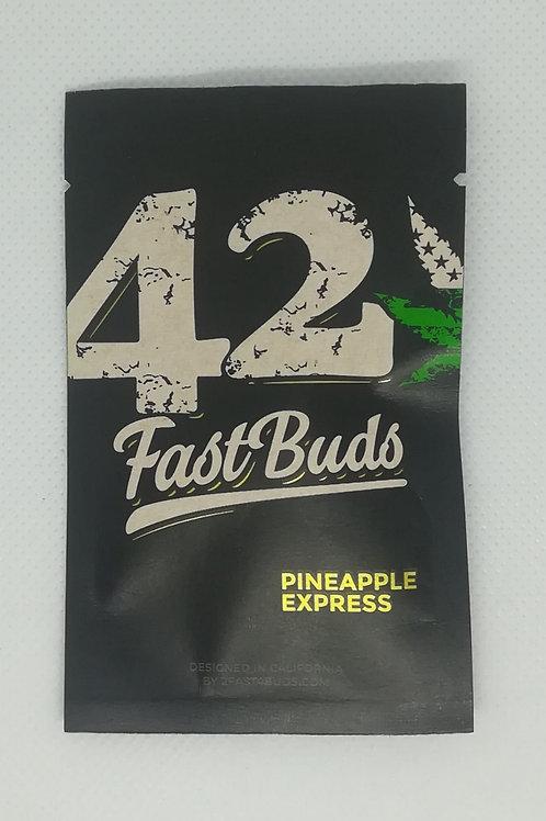 Pineapple Express (Fast Buds), selbstblühend 5 Stk