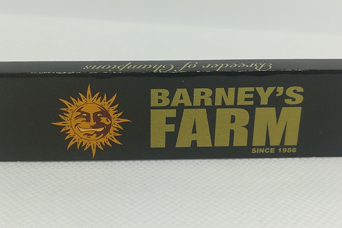 Barney's Farm Papers mit Filtertips