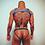 Thumbnail: Blue Harness Set