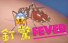 dengue fever edit.jpg