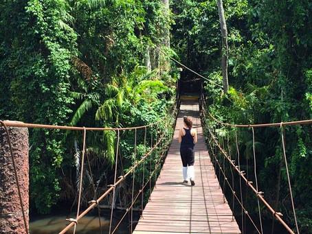 Traversing Khao Yai National Park