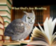 OwlReading.jpg