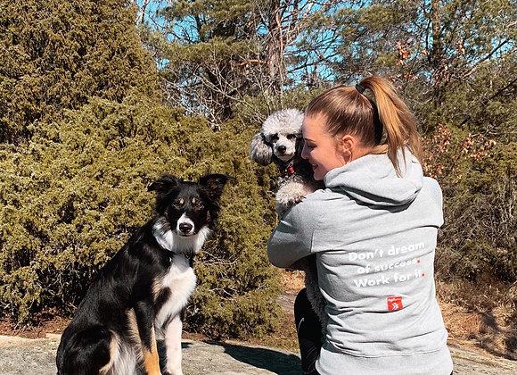 4/2: Fortsättningskurs, Valp/unghundskurs för agilityhunden (steg 2)