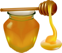 honey-4221200_960_720.png