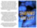 shadows summary website.png