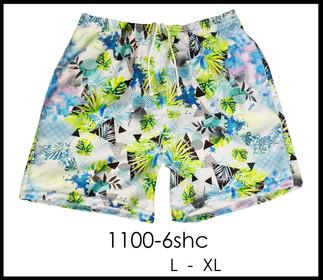 1100-6shcsinLXL.jpg