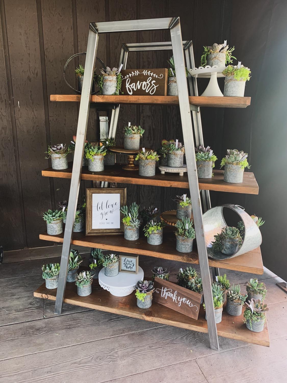 Industrial Ladder Display $55