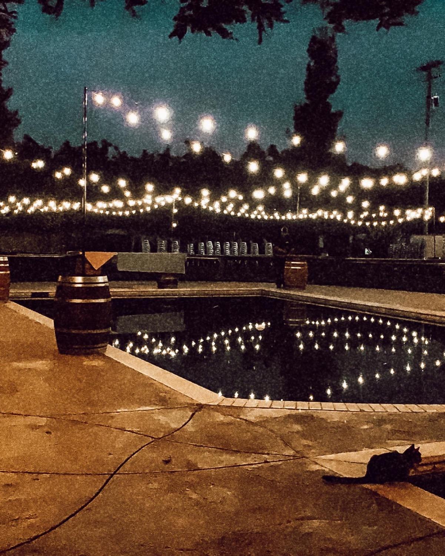 Market Lighting