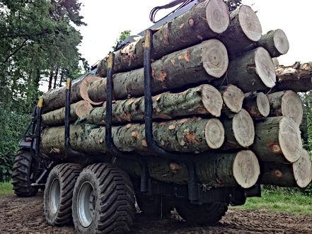 Kesla, timber trailers, kesla timber trailers, official kesla dealers, driving timber trailers, forestry machinery