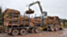 Kesla, timber truck, truck cranes,  truck loaders, forestry conversions, caledonian forestry,  kesla uk