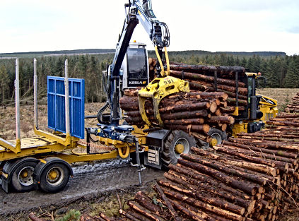 Caledonian Forestry Services Kesla Palax Processor