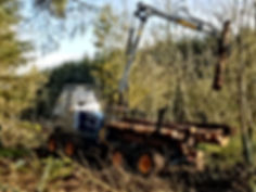 Novotny LVS 511 Forwarder