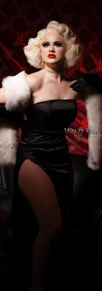 Wild Kat Photography 2019
