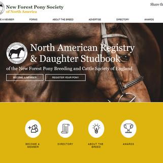 New Forest Pony Society of North America