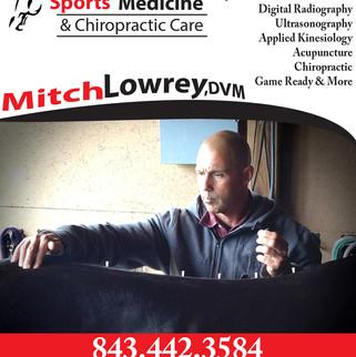 Mitch Lowrey Final Online Ad.jpg