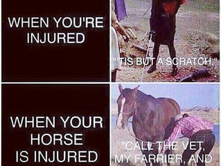 The #1 Cardinal Sin of Equestrians