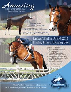 2015 Amazing.Stallion Ad 04