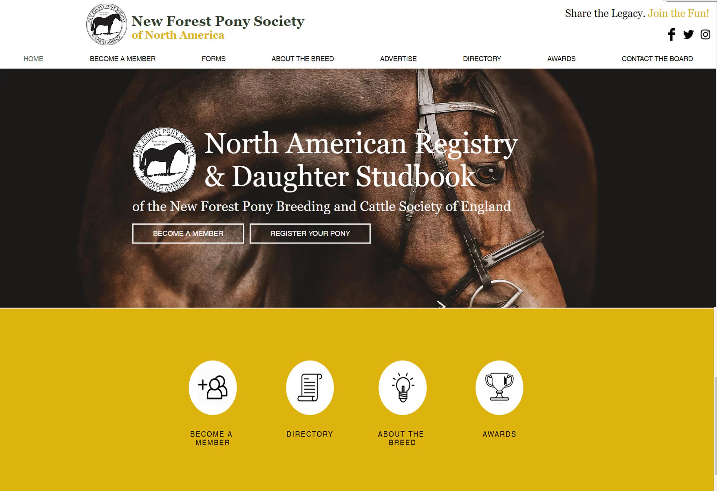 New Forest Pony Society