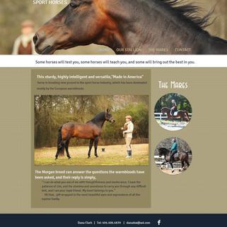 Danka Morgan Sport Horses Website