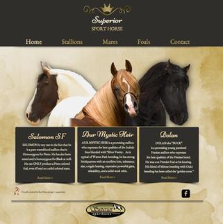 2014.4.30_SuperiorSporthorse.com.png