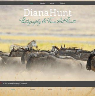 Diana Hunt Website