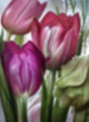 7_Aigner_Print.jpg
