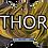 Thumbnail: Gold swirl Pet Tag