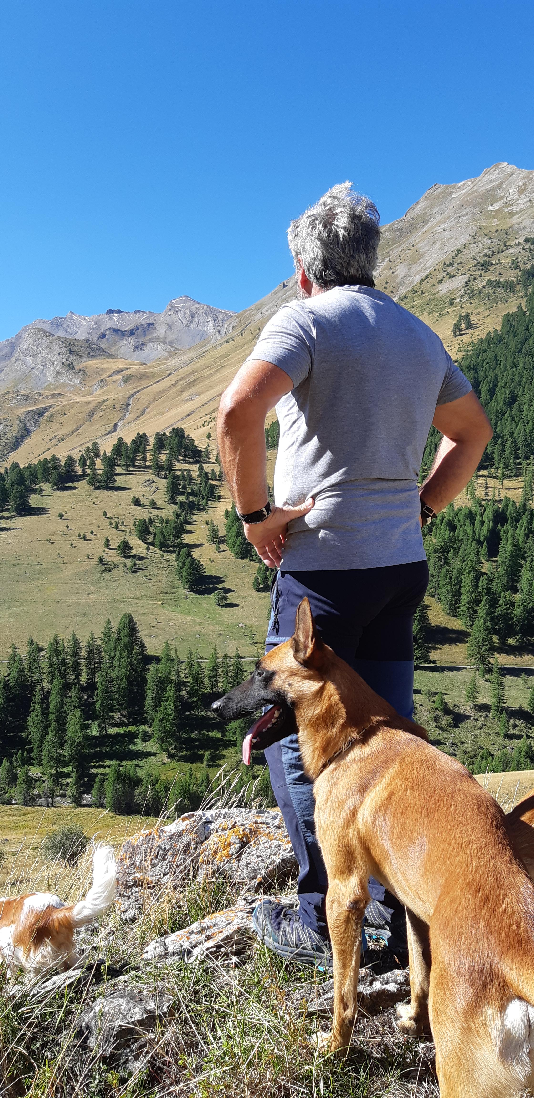 Mustang en randonnée