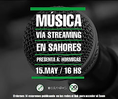 Flyer streaming Hormigas.jpeg