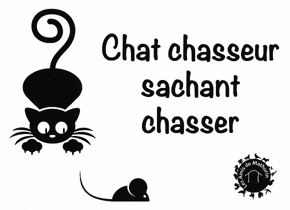 Chat chasseur ...