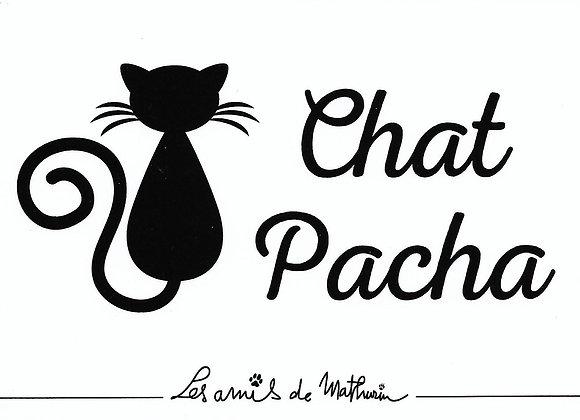 Chat Pacha