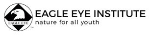 Eagle Eye Institute Logo