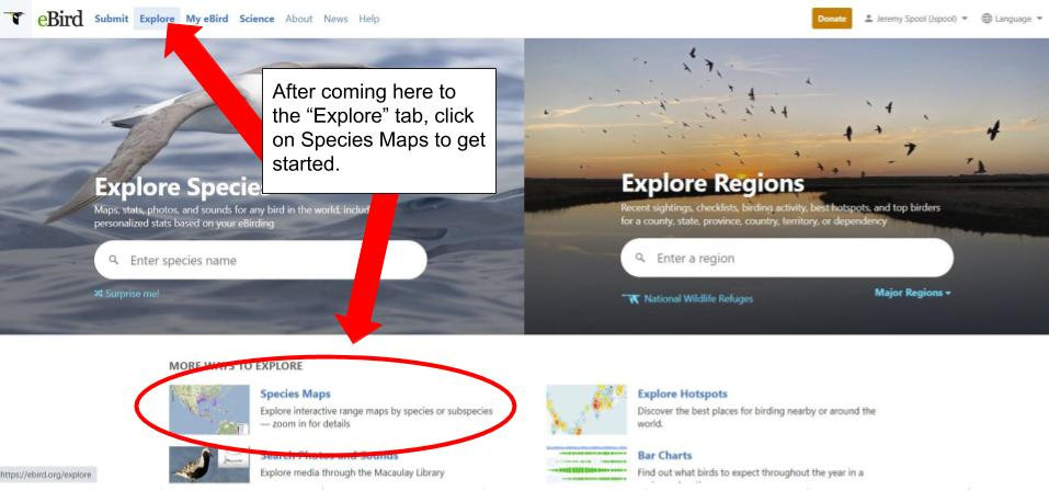 A screenshot from ebird showing how to search for a certain species of bird.