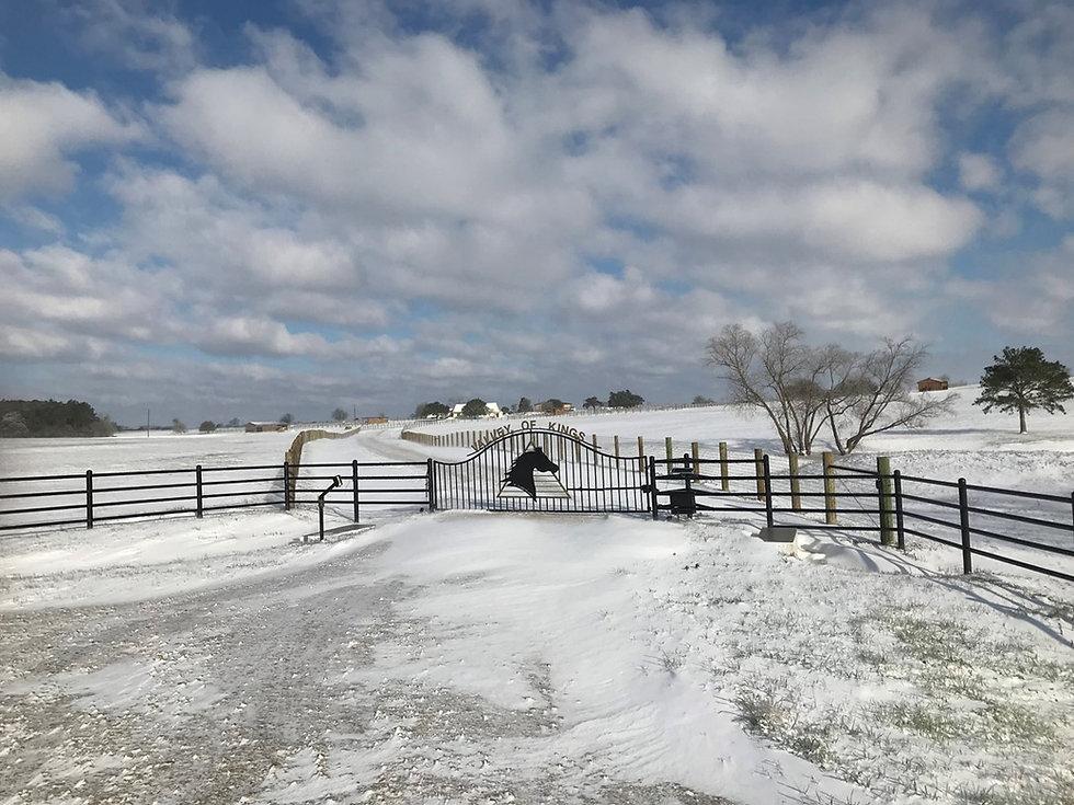 Snowy Gate 2 (2).JPG