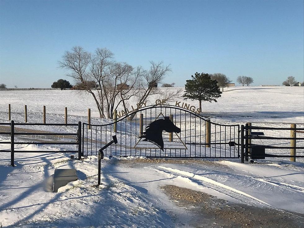 Snowy Gate.jpg