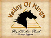 We are breeders of Straight Egyptian Arabian Horses focusing on the Abbas Pasha and Lady Anne Blunt