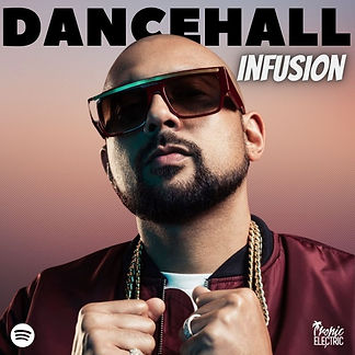 digital cover for tropic electric dancehall infusion playlist on spotify apple music deezer