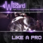 Digital cover for Like a Pro by The Wizard feat Nyanda & Chedda