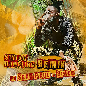 digital cover for dumpling remix by stylo g feat sean paul and spice