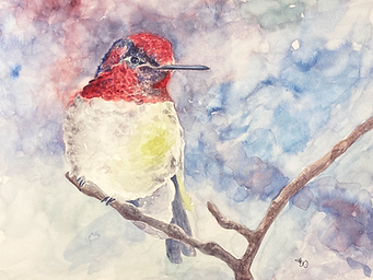 anna's hummingbird etsy.png