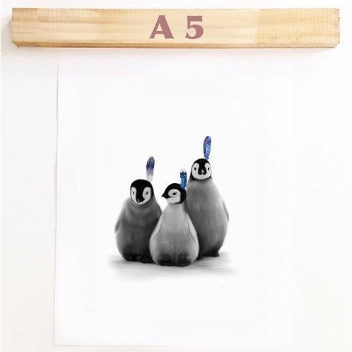 A5 ARCTIC BABIES