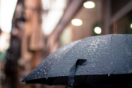 rainy-rain-umbrella-weather-17739 (1).jp