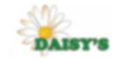 daisy logo.PNG