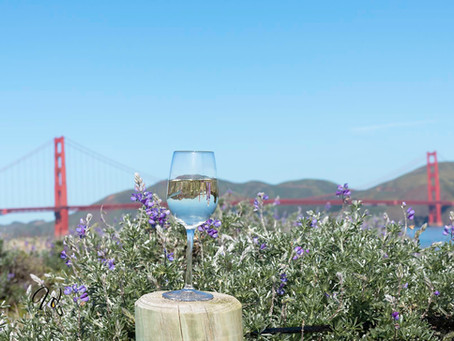 San Francisco through the Wine Glass