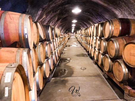 Taste of Napa Part III: A Day of Wine Tasting