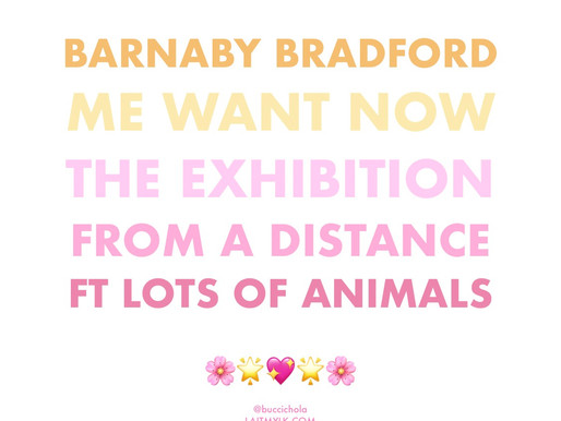 LOTS of Animals and LOTS of Art! 🌟🎨🦒🐒💛🐱🐘♥️🕊💕💖💥