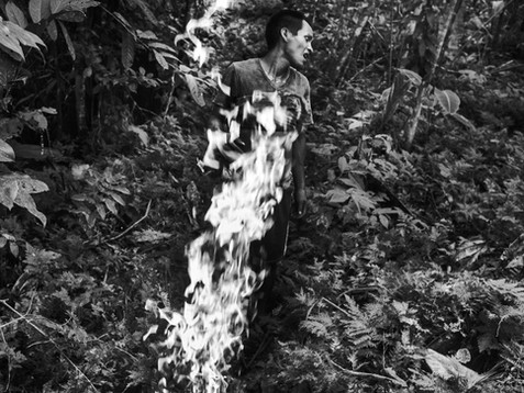 """In August, 2016, Aladino, a native Bora shaman, burns a large amount of dry """"cetico"""" leaves in a small village of Pebas, located in the heart of the Amazon. The ashes when mixed with coca powder adds perfect flavor in the most important Bora element. The purpose to burn the leaves deep inside the jungle is the belief of being watched by the ancient spirits. Aladino says that the real tradition is to be guided by the spirits in order to achieve the perfect mixture. The coca is the main source for a shaman. It is through the power of the plant where a true indigenous shaman gets all his powers and ancestral knowledge."""