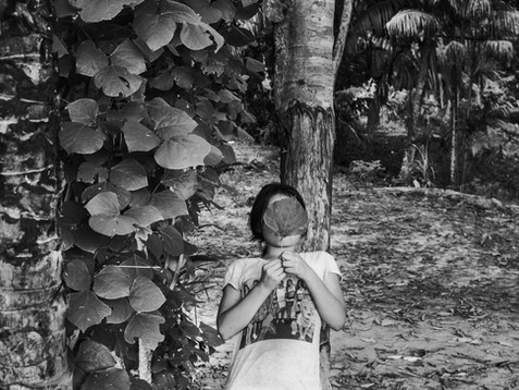 In October, 2017, Cecilia, Aladino's only daughter, plays with a plant outside their home in the village of Pebas, Amazon region. Being the only daughter among seven boys, is a challenge for her. A shaman is family is not a conventional one because Aladino struggles to play the father role as his duties being a spiritual leader don't allow him. In his perspective, his life is guided by the spiritual ancestors and the ancient rooted indigenous rules. Cecilia says she is still trying to understand all of this and is not sure about the feelings when comparing with a now westernized family stereotype which is all around the village.